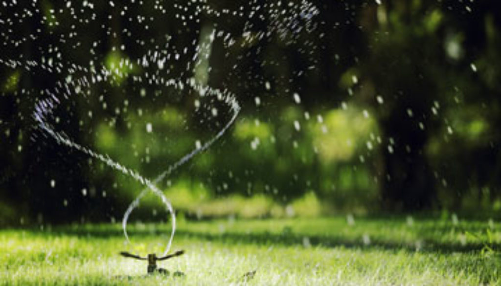 Terra Landscaping Watering YOur LAwn (2)